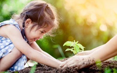 Planting Seeds of Prayer